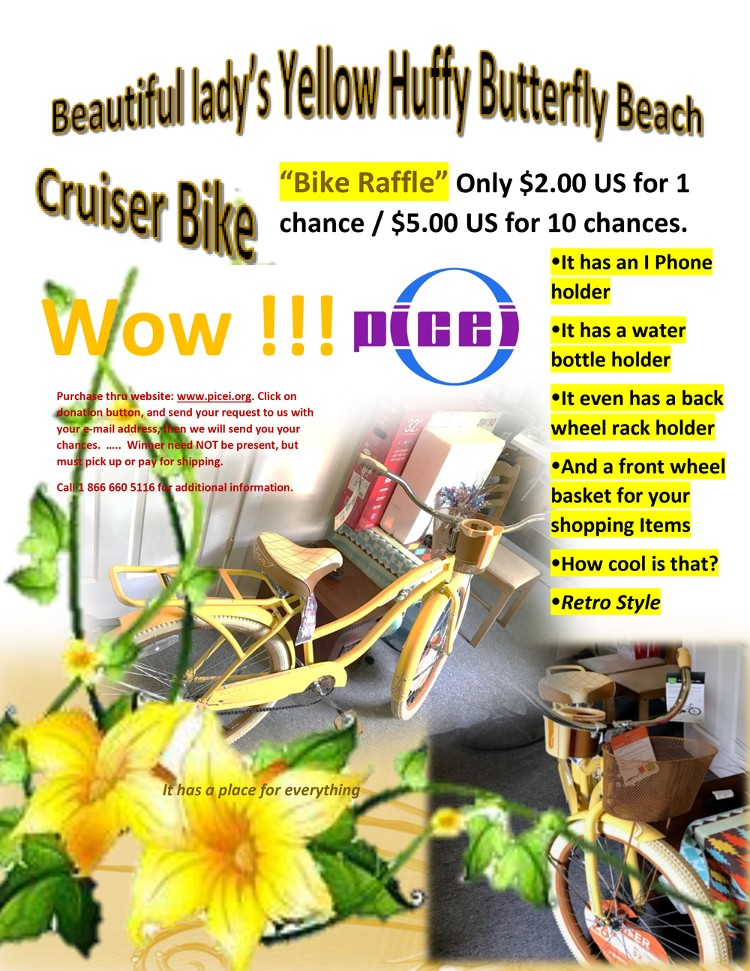 Bike Basket Raffle